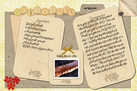 Baby Back Ribs Recipe Card