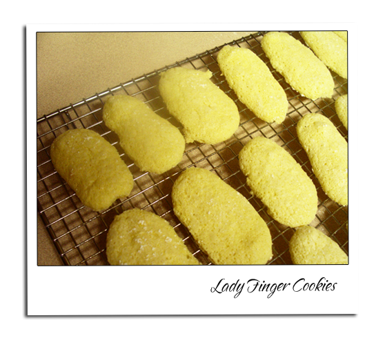 ladyfinger cookies Lady Finger Cookies