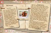 Recipe Card South Western Egg Rolls